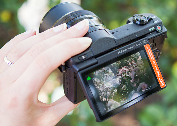 FF_Sony_A5100_alpha_review_02