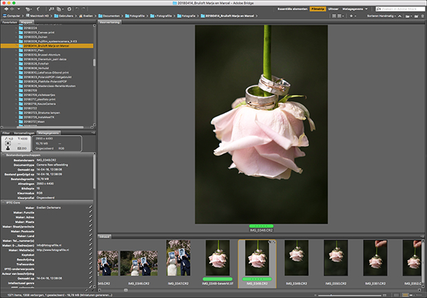 Verschillen Photoshop en Lightroom