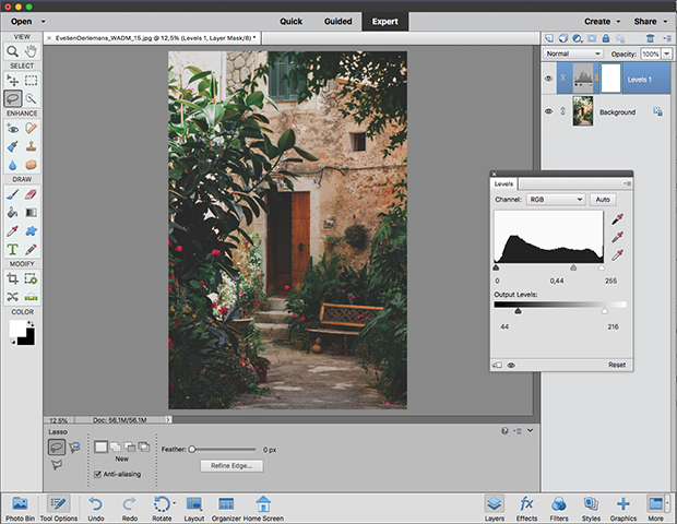 Expert opties in Adobe Photoshop Elements 2019
