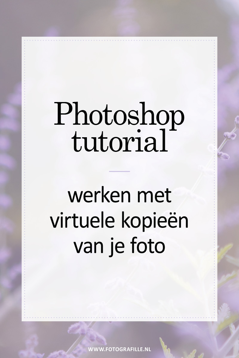 virtuele kopieën lightroom